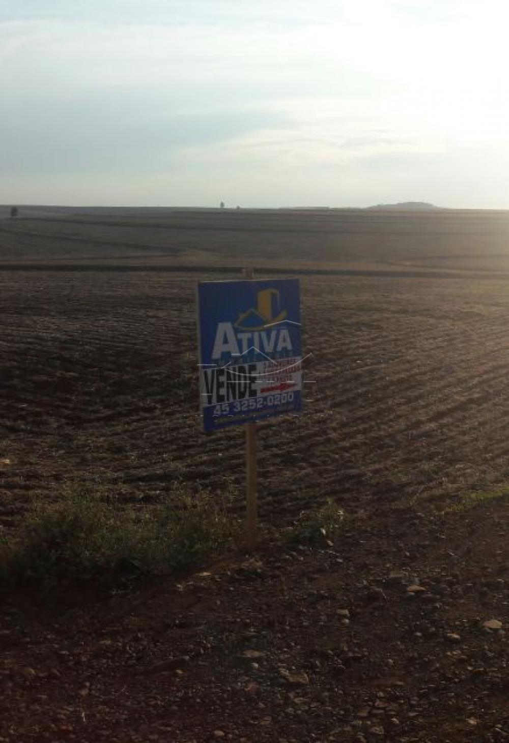 Comprar Terreno / Chácara em Ouro Verde do Oeste apenas R$ 280.000,00 - Foto 2