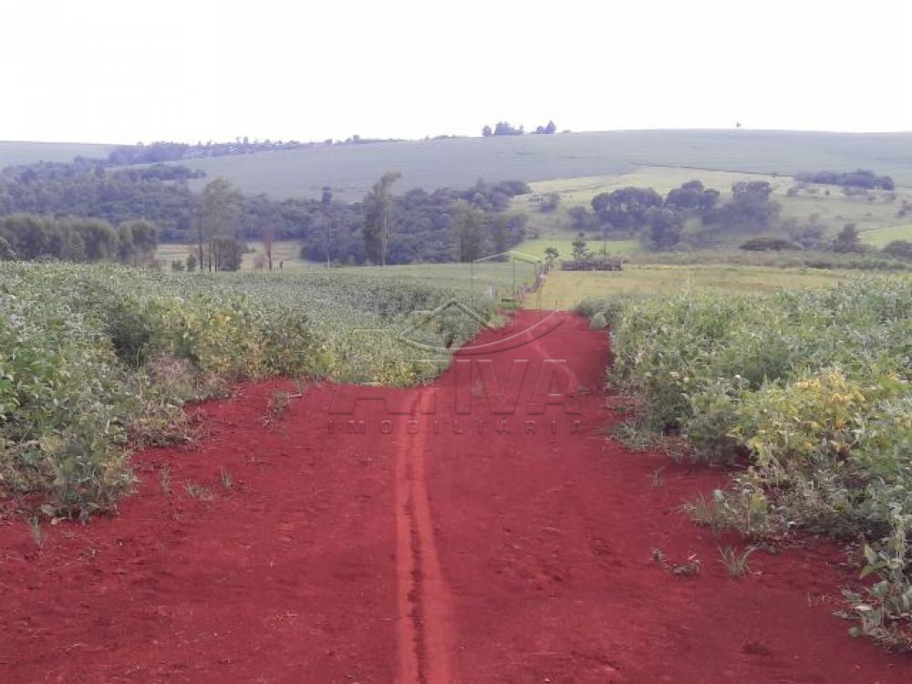 Comprar Terreno / Chácara em Ouro Verde do Oeste apenas R$ 280.000,00 - Foto 3