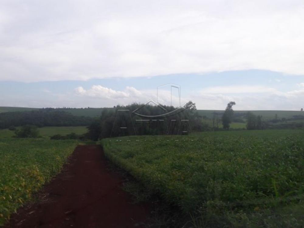 Comprar Terreno / Chácara em Ouro Verde do Oeste apenas R$ 280.000,00 - Foto 4