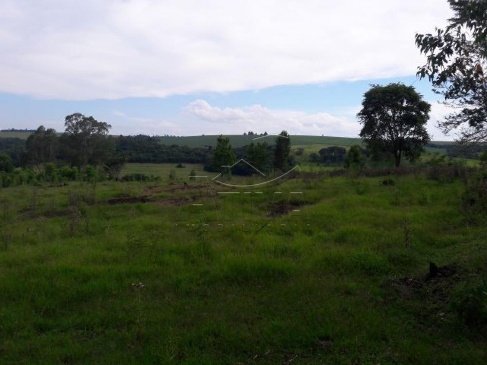 Comprar Terreno / Chácara em Ouro Verde do Oeste apenas R$ 280.000,00 - Foto 6