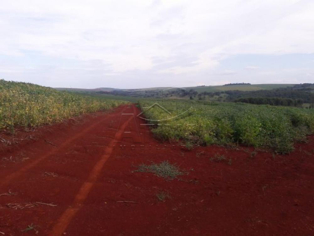 Comprar Terreno / Chácara em Ouro Verde do Oeste apenas R$ 280.000,00 - Foto 7