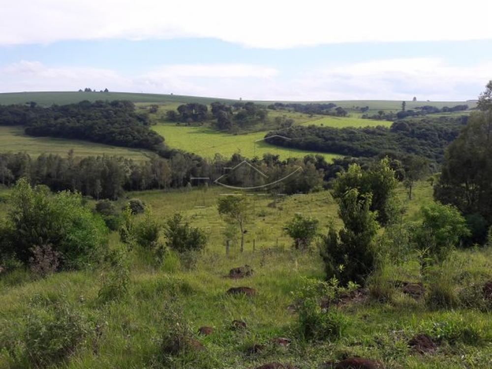 Comprar Terreno / Chácara em Ouro Verde do Oeste apenas R$ 280.000,00 - Foto 9