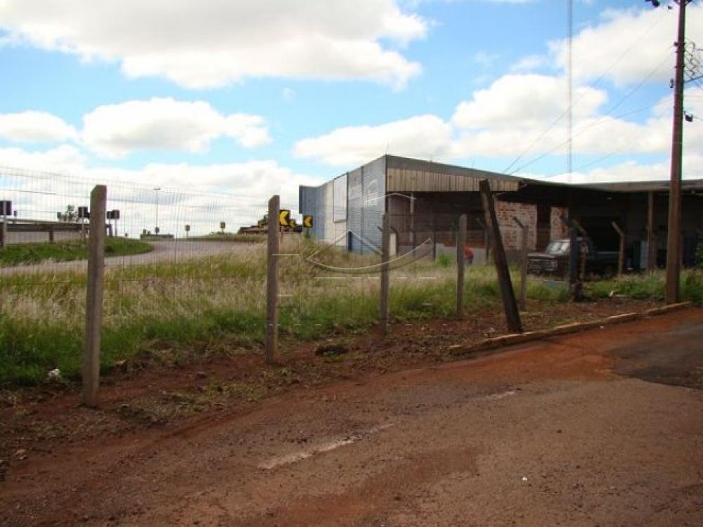 Comprar Comercial / Barracão em Toledo apenas R$ 1.799.000,00 - Foto 4