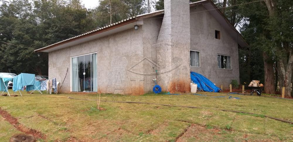 Comprar Rural / Chácara sem Casa em Toledo apenas R$ 750.000,00 - Foto 8