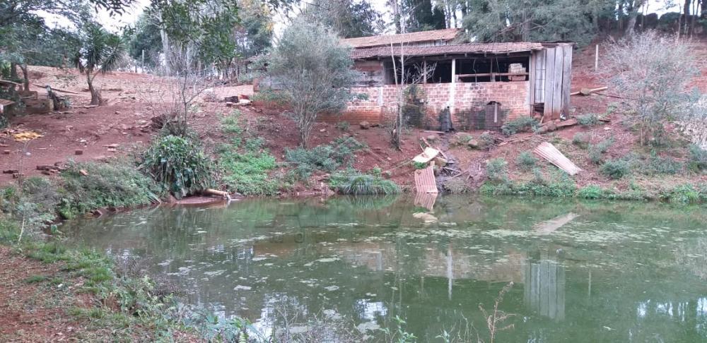 Comprar Rural / Chácara sem Casa em Toledo apenas R$ 750.000,00 - Foto 12