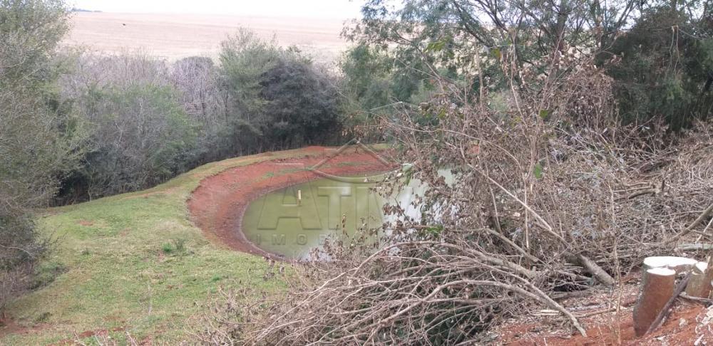 Comprar Rural / Chácara sem Casa em Toledo apenas R$ 750.000,00 - Foto 19