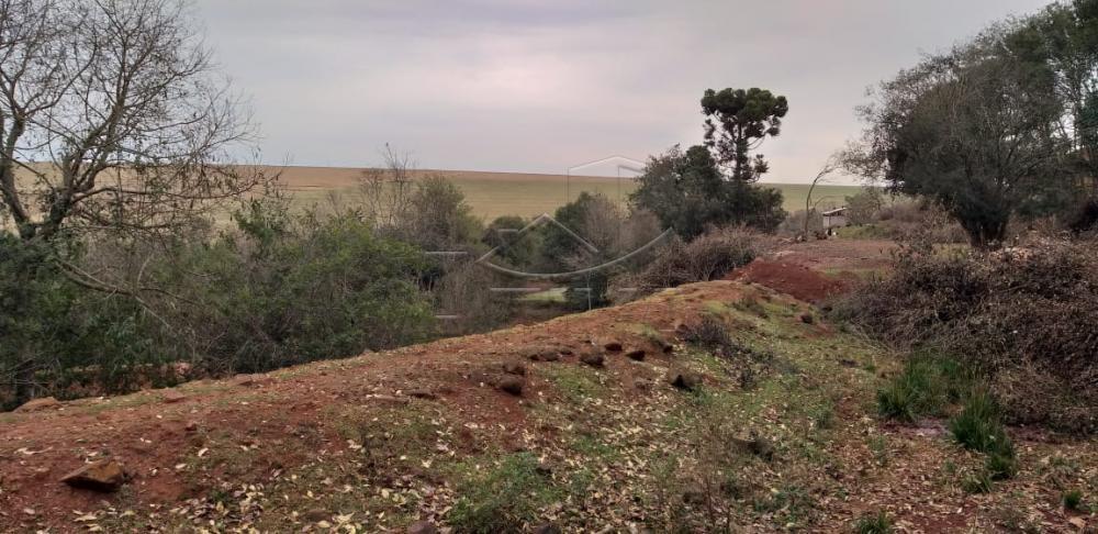 Comprar Rural / Chácara sem Casa em Toledo apenas R$ 750.000,00 - Foto 23