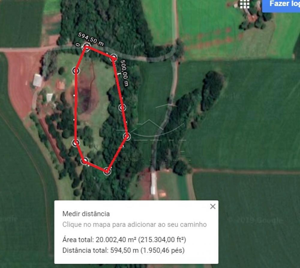 Comprar Rural / Chácara sem Casa em Toledo apenas R$ 750.000,00 - Foto 1
