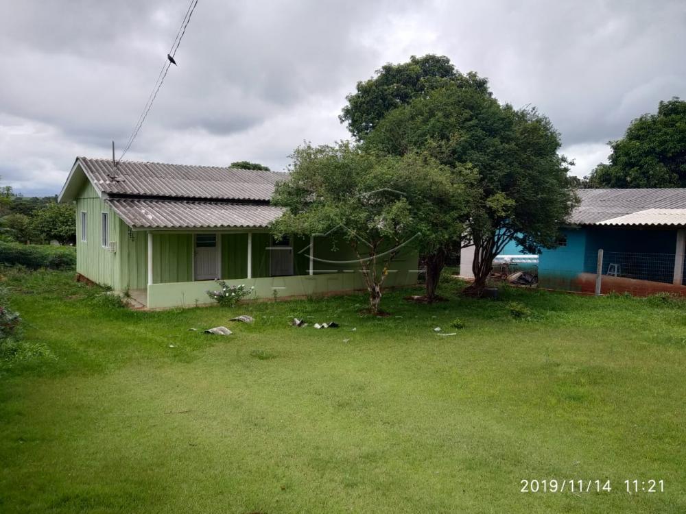 Comprar Terreno / Lote em São Pedro do Iguaçu apenas R$ 130.000,00 - Foto 5