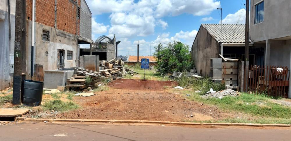 Comprar Terreno / Lote em Toledo apenas R$ 150.000,00 - Foto 1