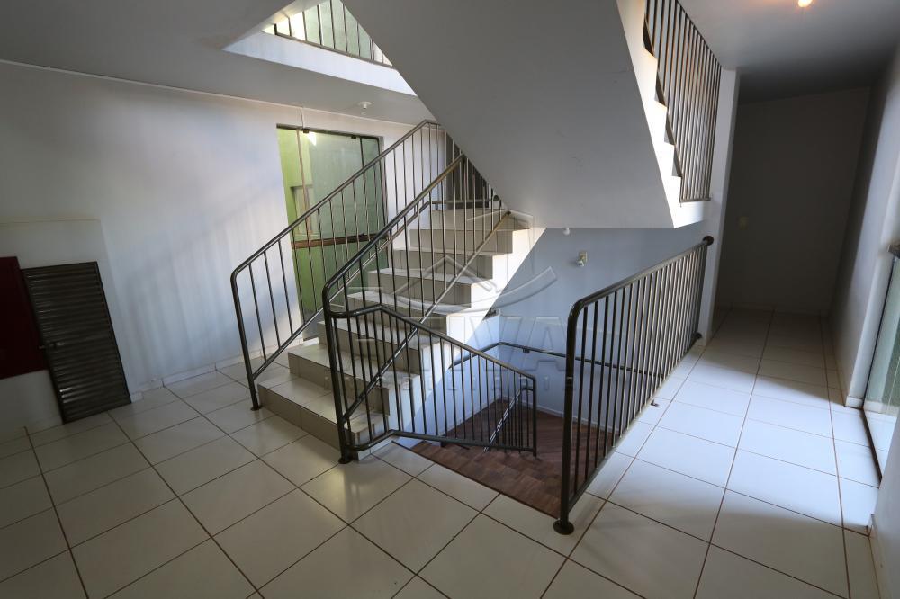Alugar Apartamento / Padrão em Toledo R$ 990,00 - Foto 10