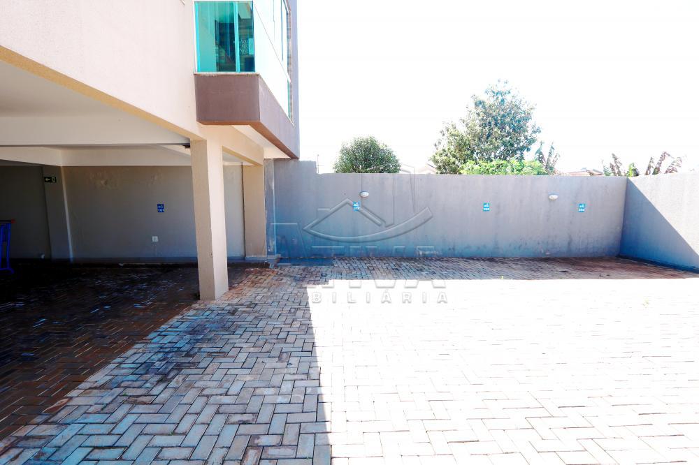 Alugar Apartamento / Padrão em Toledo R$ 1.200,00 - Foto 5