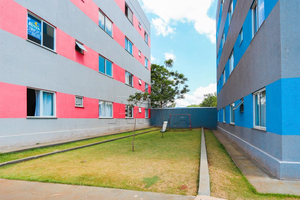 Comprar Apartamento / Padrão em Toledo apenas R$ 130.000,00 - Foto 6