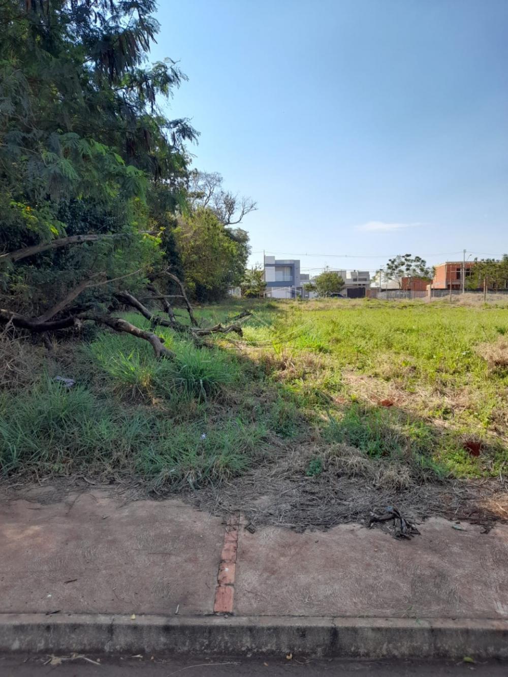 Comprar Terreno / Lote em Toledo R$ 323.400,00 - Foto 3