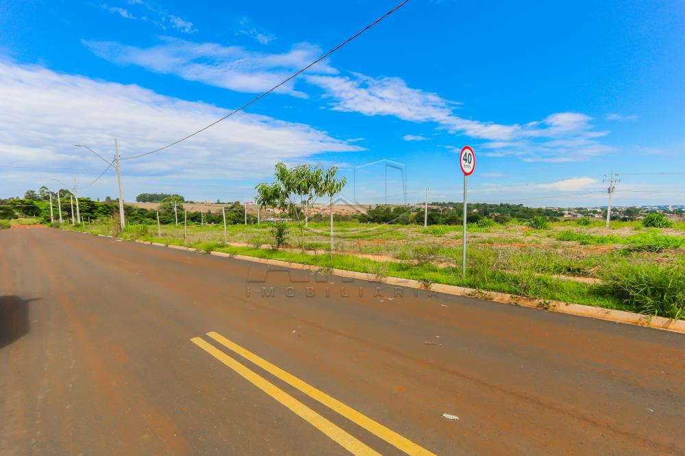 Comprar Terreno / Lote em Toledo R$ 112.000,00 - Foto 7