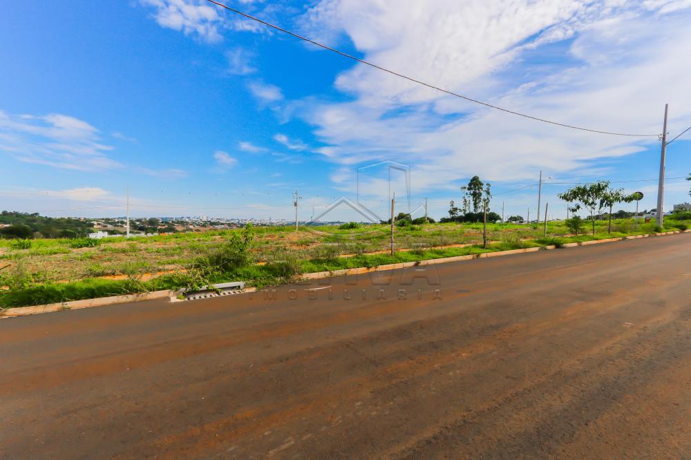 Comprar Terreno / Lote em Toledo R$ 112.000,00 - Foto 8