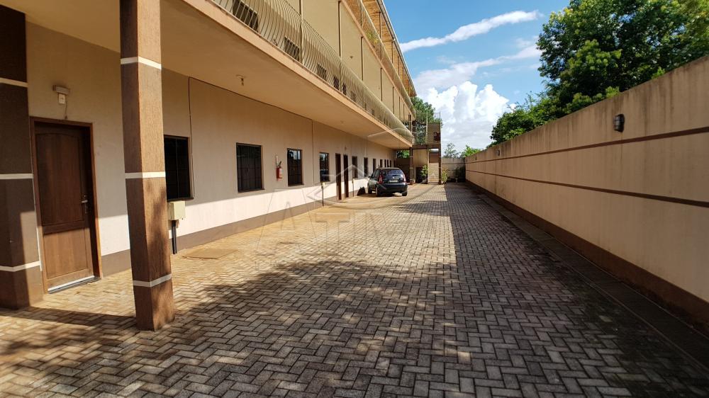Alugar Apartamento / Padrão em Toledo apenas R$ 500,00 - Foto 24