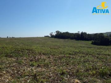 Toledo Area Rural de Toledo terreno Venda R$2.950.000,00  Area do terreno 343398.00m2