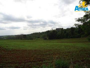 Toledo Area Rural de Toledo rural Venda R$14.000.000,00  Area do terreno 350900.00m2