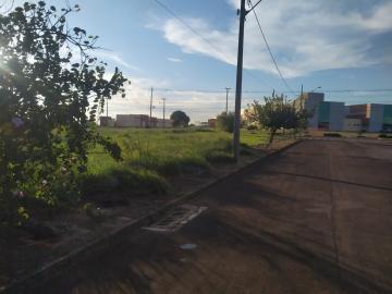 Terreno / Lote em Toledo , Comprar por R$490.000,00