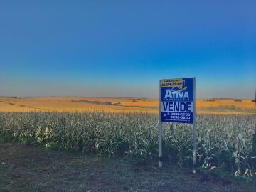 Comprar Rural / Chácara sem Casa em Assis Chateaubriand R$ 780.000,00 - Foto 1