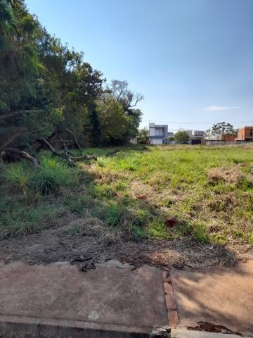 Comprar Terreno / Lote em Toledo R$ 323.400,00 - Foto 1
