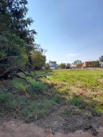 Comprar Terreno / Lote em Toledo R$ 323.400,00 - Foto 4