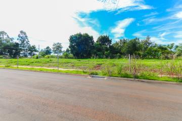 Comprar Terreno / Lote em Toledo R$ 112.000,00 - Foto 9